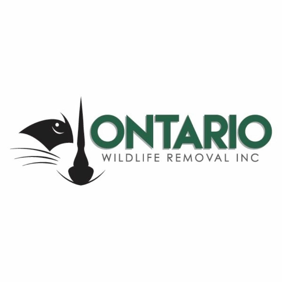 ONTARIO WILDLIFE REMOVAL INC